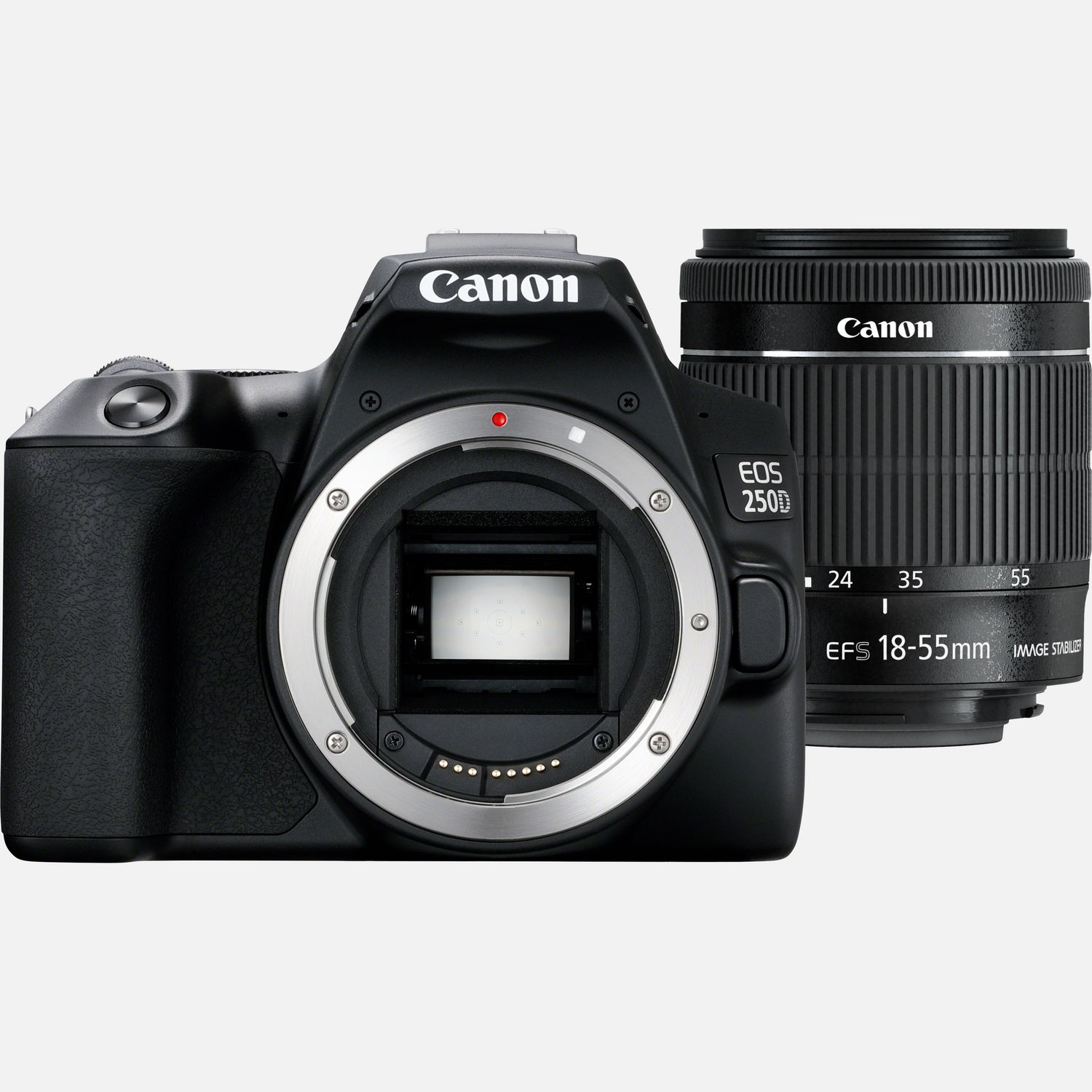 Image of Canon EOS 250D Body, Black and EF-S 18-55mm f/4-5.6 IS STM Lens