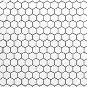 White Hexagon II Porcelain Mosaic