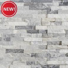New! Harbor Gray Splitface Quartzite Panel Ledger