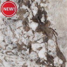 New! Sample - Custom Countertop Bianco Antico Granite