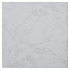 Crystal White Ceramic Tile