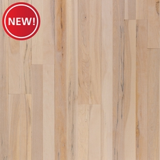 New! Almond Pier Birch Smooth Solid Hardwood