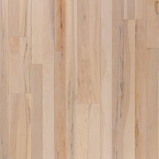Almond Pier Birch Smooth Solid Hardwood