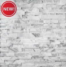 New! Calacatta Cressa Honed Marble Ledger