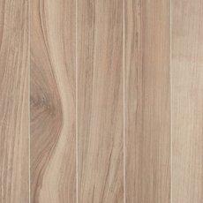 Aspen Natural Polished Wood Plank Porcelain Tile