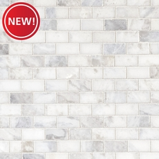New! Sahara Carrara Polished Brick Marble Mosaic
