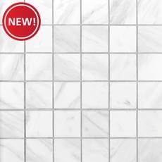 New! Volakas Porcelain Mosaic