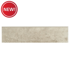 New! Dover Brown Porcelain Bullnose