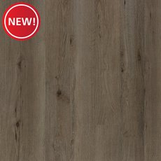 New! Castries Oak High Gloss Water-Resistant Laminate