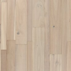 Seashell Acacia Solid Hardwood