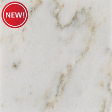 New! Sample - Custom Countertop Calcatta Quartzite