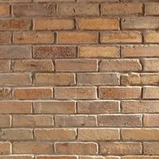 Georgia Clay Reclaimed Brick