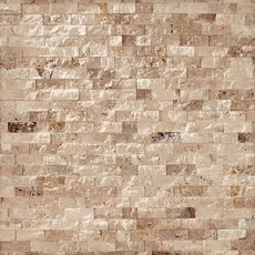 Valencia Travertine Panel Ledger