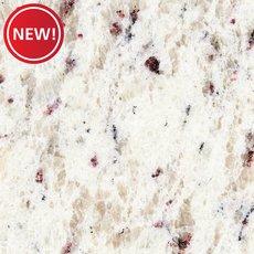 New! Ready to Install Ornamental White Granite Slab Includes Backsplash
