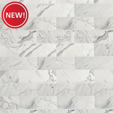 New! Statuario Polished Marble Tile