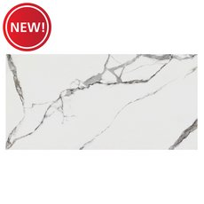 New! Calcutta Matte Porcelain Tile
