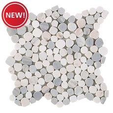 New! Dolomite Palissandro Honed Pebble Mosaic