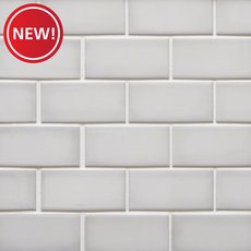 New! La Belle Purity 2 x 4 in. Brick Ceramic Mosaic