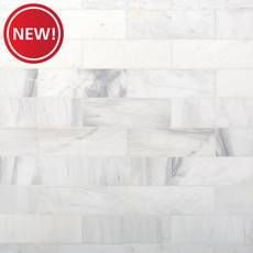 New! Bianco Dolomite Polished Marble Tile