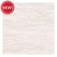 New! Trevi Bianco Polished Ceramic Tile
