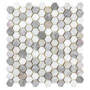 Coastal Ivory Blend 1 in. Honed Marble Mosaic