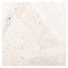 Terra Nuova Brushed Marble Tile 8 X 16 921100649
