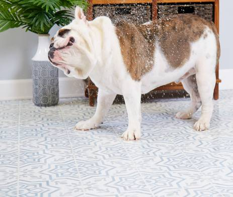 Tile for the Pet Lifestyle